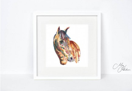 Meg Hawkins 12 X 12 Unmounted Coloured Horse Print