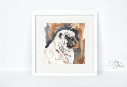 Meg Hawkins 12 X 12 Unmounted Shropshire Sheep Print