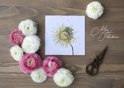 Meg Hawkins Pack of 6 Daisy greeting cards
