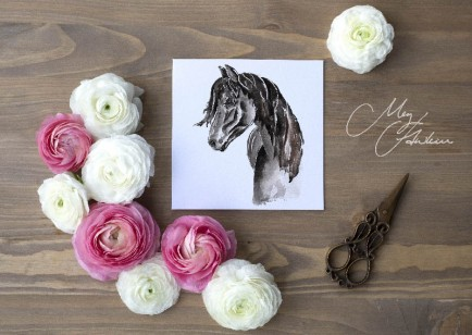 Meg Hawkins Pack of 6 Horse greeting cards