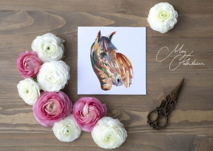 Meg Hawkins Pack of 6 Coloured Horse greeting cards