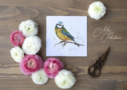 Meg Hawkins Pack of 6 Blue Tit greeting cards