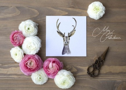 Meg Hawkins Pack of 6 Deer greeting cards