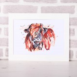 Meg Hawkins Mounted 'Angus' the Highland cow Print