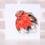 Meg Hawkins Pack of 6 'Reggie' the robin greeting cards