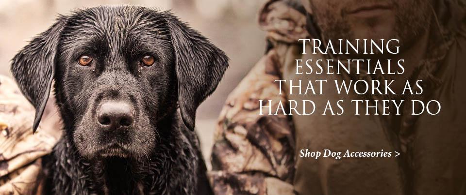Dog Training Accessories