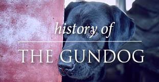 Gundog History
