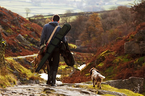 Man and Gun Dog on Heather Moor